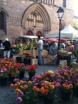 Jazzy flowers, Cahors Market