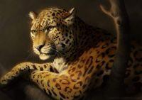 catamancer_leopard