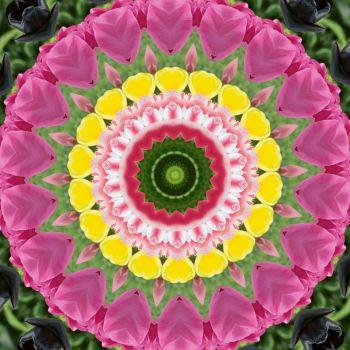 kaleidoscope 316 pink and yellow large