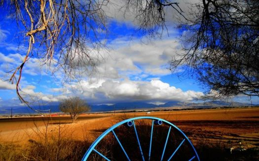 Blue Wagon Wheel