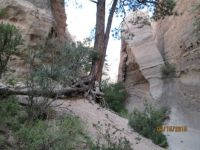 Tent Rocks slot canyon in New Mexico south west of Santa Fe.