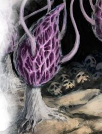 Violet Fungus-Forgotten Realms