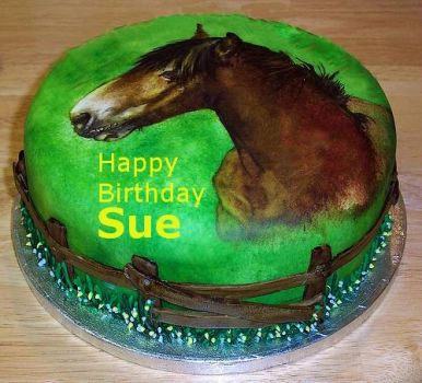 Happy Birthday Sue!  Hope this is the beginning of a year of good health, happiness and low stress!