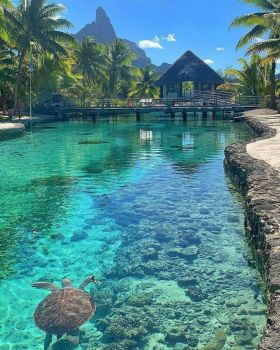 Clear Waters in Bora Bora