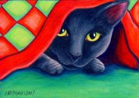 Black Cat Under the Christmas Quilt 70