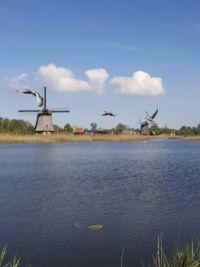 2020- Fietsen naar Alkmaar 424_155317