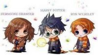 Harry , Ron And Hermione