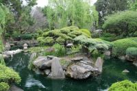 Japanese Garden in Adelaide