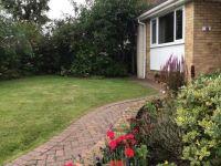 Front garden today.