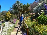 Spring Bluff Station - the gardens.