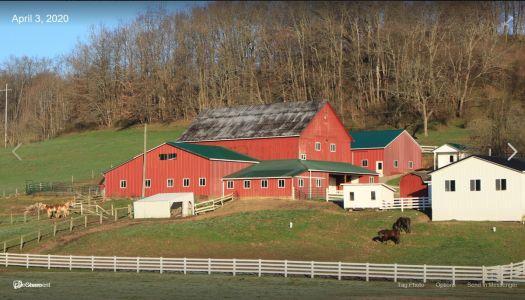Barns of Harrison County near Scio, Ohio