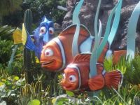 DW Fun Fish