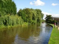 A cruise along the Trent and Mersey Canal, Hardings Wood Junction to Derwent Mouth (1181)