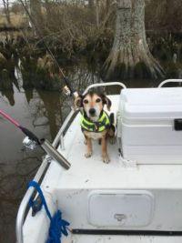 Cody fishing 20161512