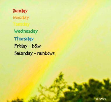 New Theme Sunday - Color Wheel Week