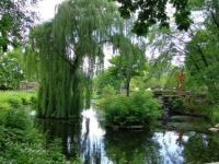Beautiful Gardens at the Zoo