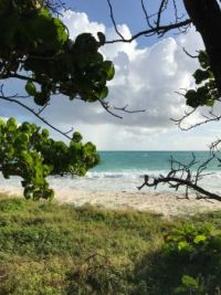 Jabberwok Beach, Antigua