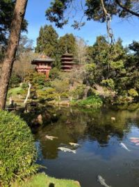 Japanese Tea Garden, GGP