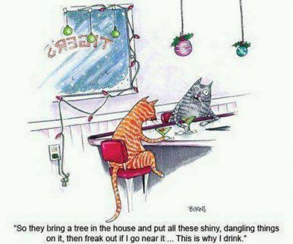 LOL -- My cats exactly!