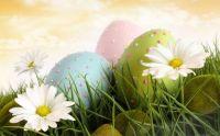 Easter Morning greetings!