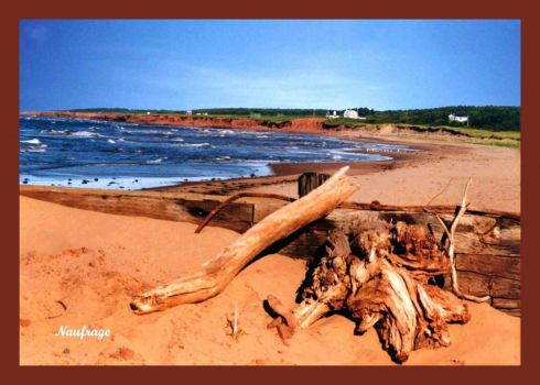 Prince Edward Island by Lillian