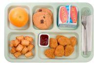 Public School Lunch