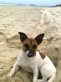 2.Jay loves the beach