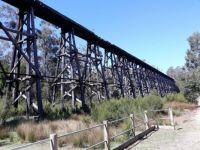 Historic Trestle Bridge Victoria