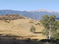 Pikes Peak from Palmer Park