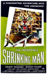 THE INCREDIBLE SHRINKING MAN - 1967 POSTER - GRANT WILLIAMS