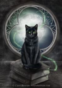 čarodějná kočka