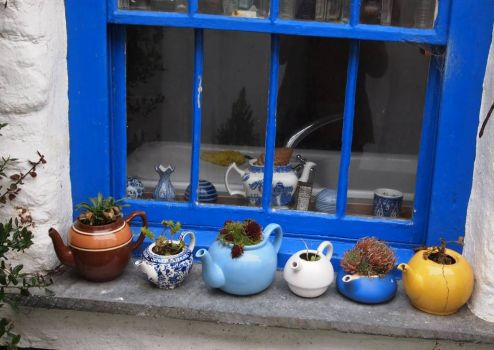 Port Isaac Tea Pots