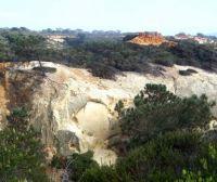 Torrey Pines - White Cliffs & Red Butte