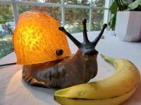 Three pronged snail