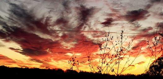 Radiant November Sunset