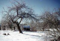 Ice Storm Granby  1950's