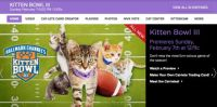 Just alerting my fellow kitty lovers ... KITTEN BOWL!!