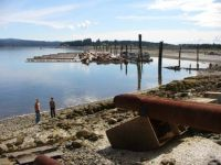 near Fanny Bay on Vancouver Island