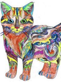 Pets Coloring Book Cat