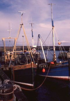 Fishing Boats at St Abbs Harbour