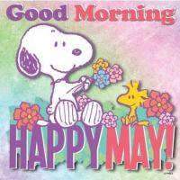 Happy May !