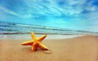 Sandstar Beach!