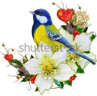 bright-bird-tit-flower-hellebore-600w-704926069