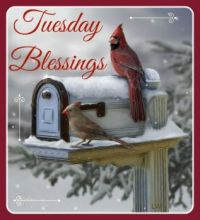 Good Morning - Tuesday Blessings