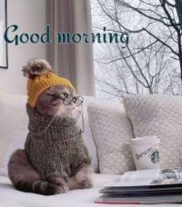 Good morning.........Have a nice week!
