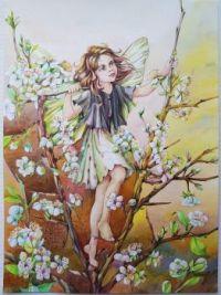 Blackthorn fairy