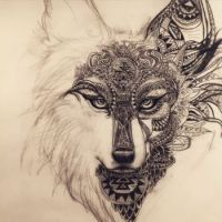 wolf or fox