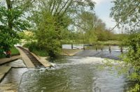 Rollers, River Cherwell