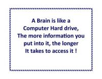 Thought of the Day: A Brain