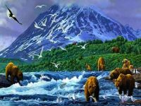 bear-clan-mountain-scenery